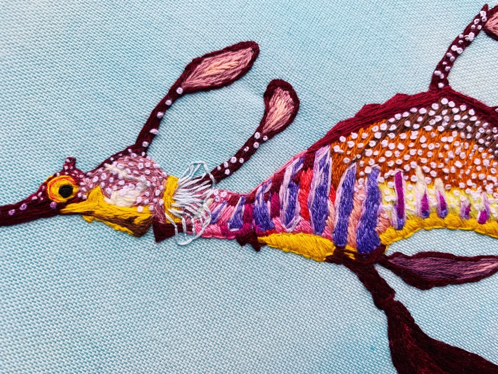 Weedy Sea Dragon, close